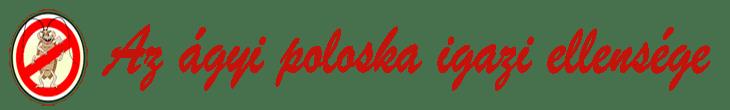 Rovarirtás Debrecen